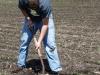 reed-digging