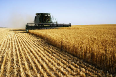 Harvest Safety Tips